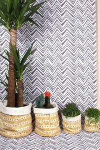 Cotton canvas for plant pots