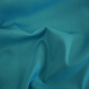 Turquoise Cotton Canvas