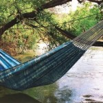 Hammock Cotton Canvas
